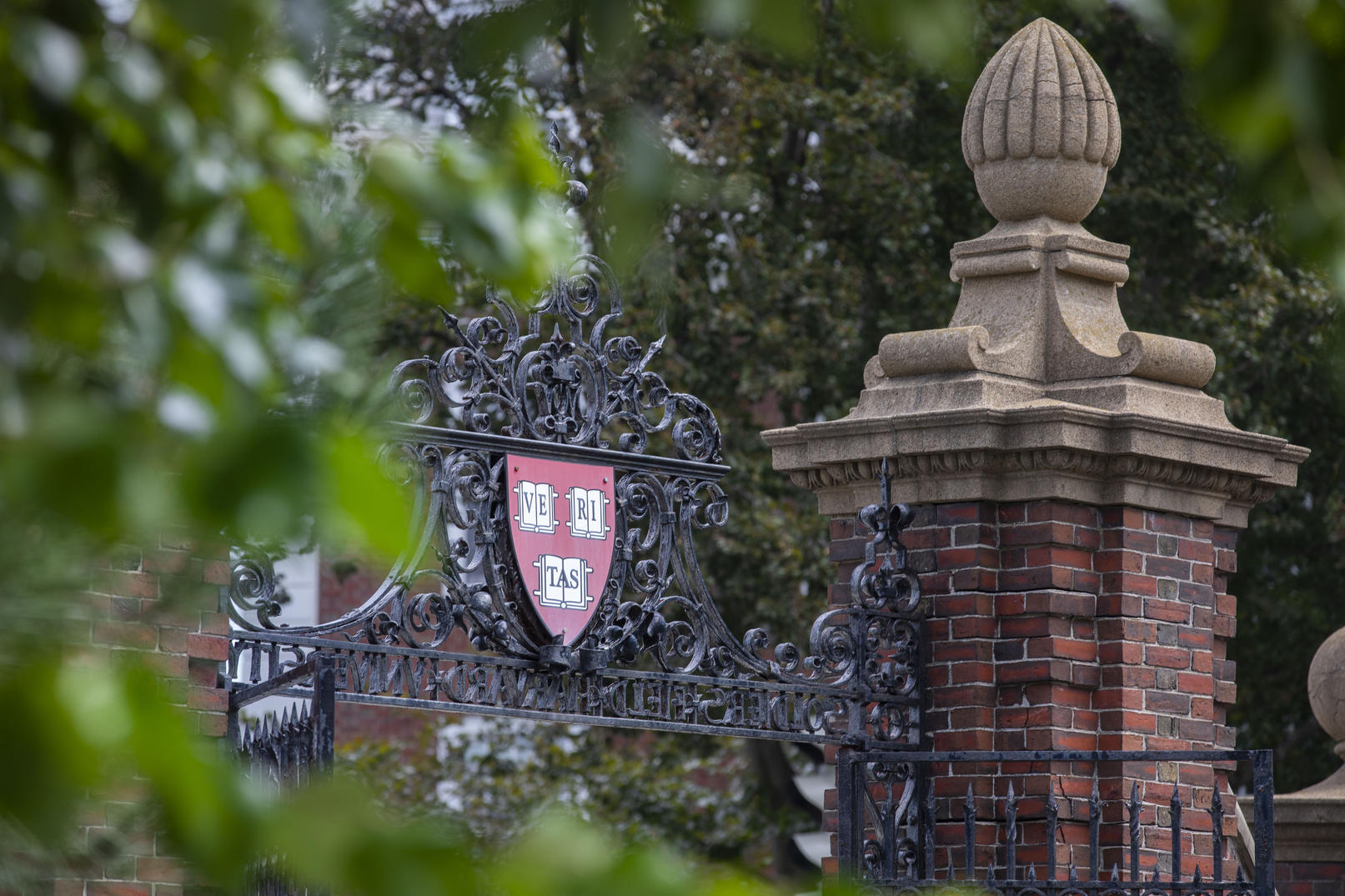 Photo of the gates to Harvard yard