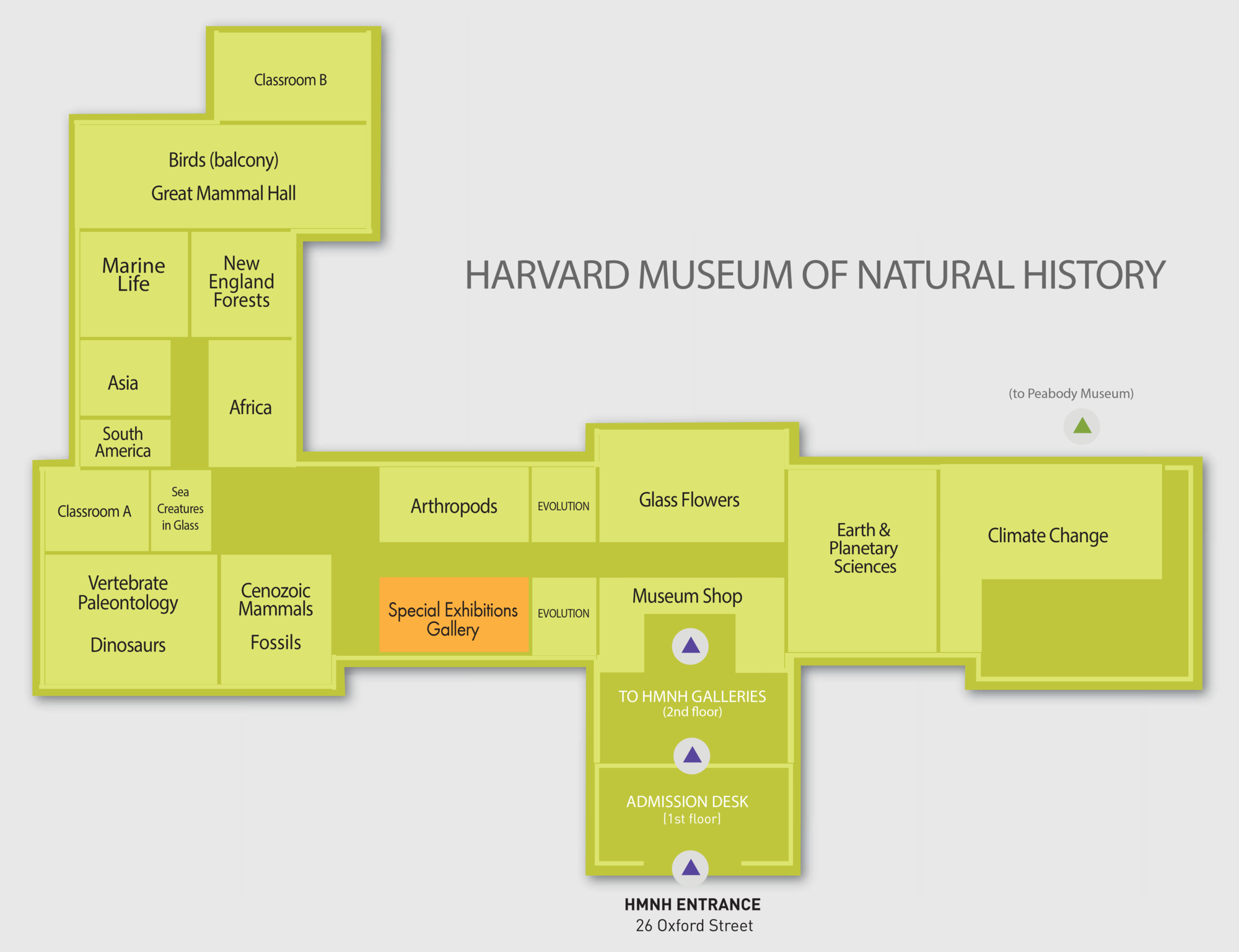 Natural History Museum Exhibition Floor Plan