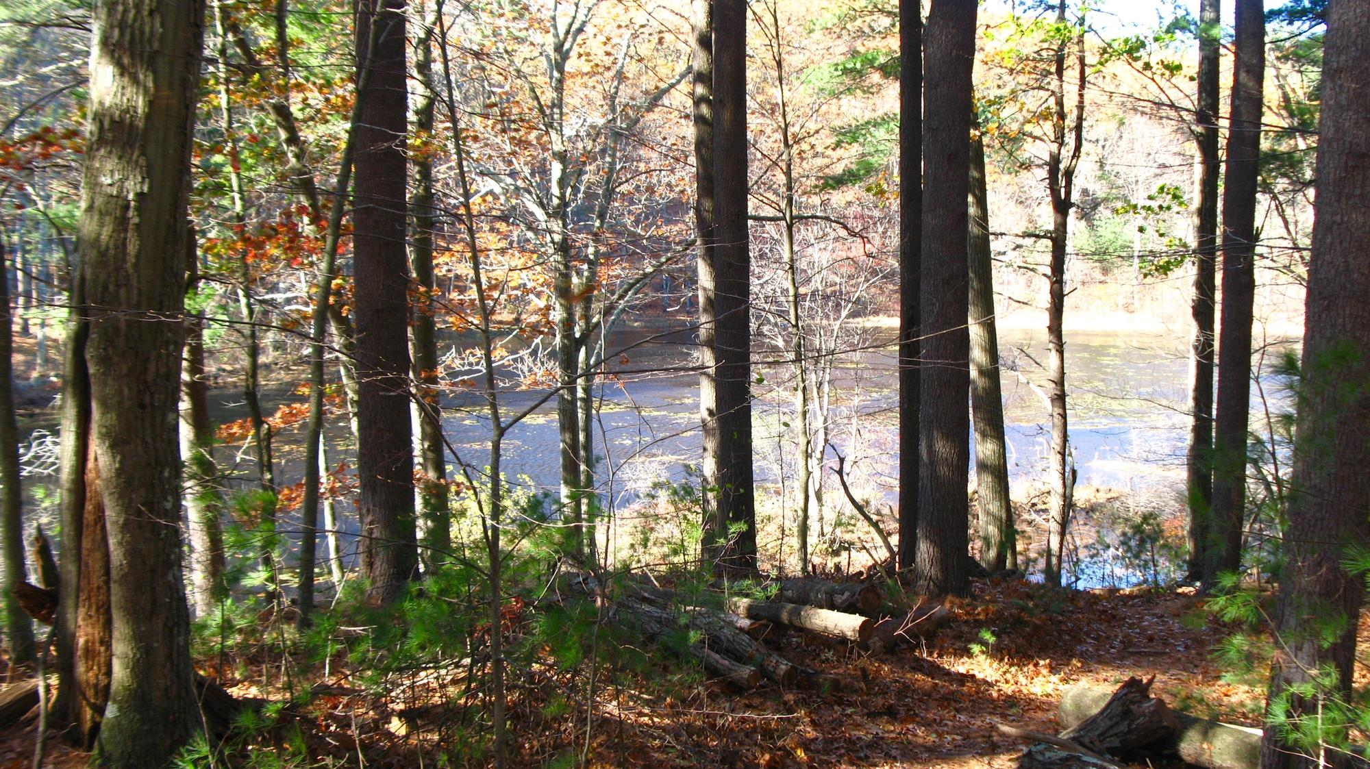 View of the river from base of Holden Hill.