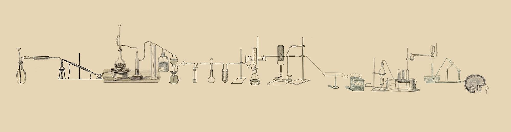 Science of Science