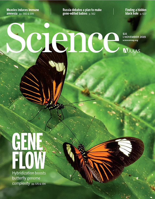 Science cover, Nov. 1, 2019