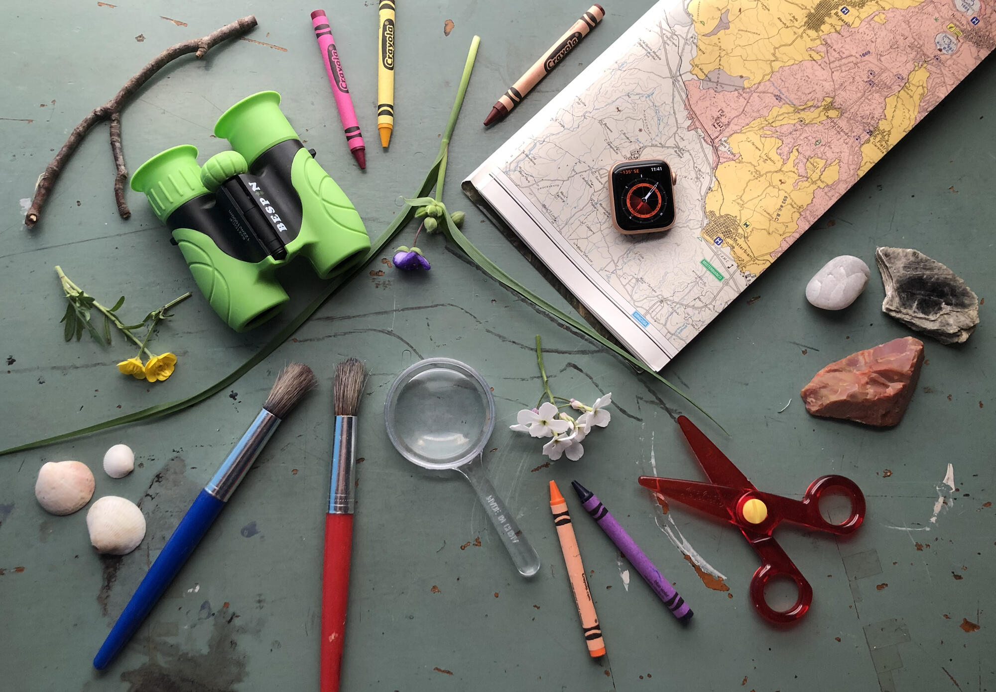 Paintbrushes, writing utensils,magnifying glass, binoculars, and a map and compass.