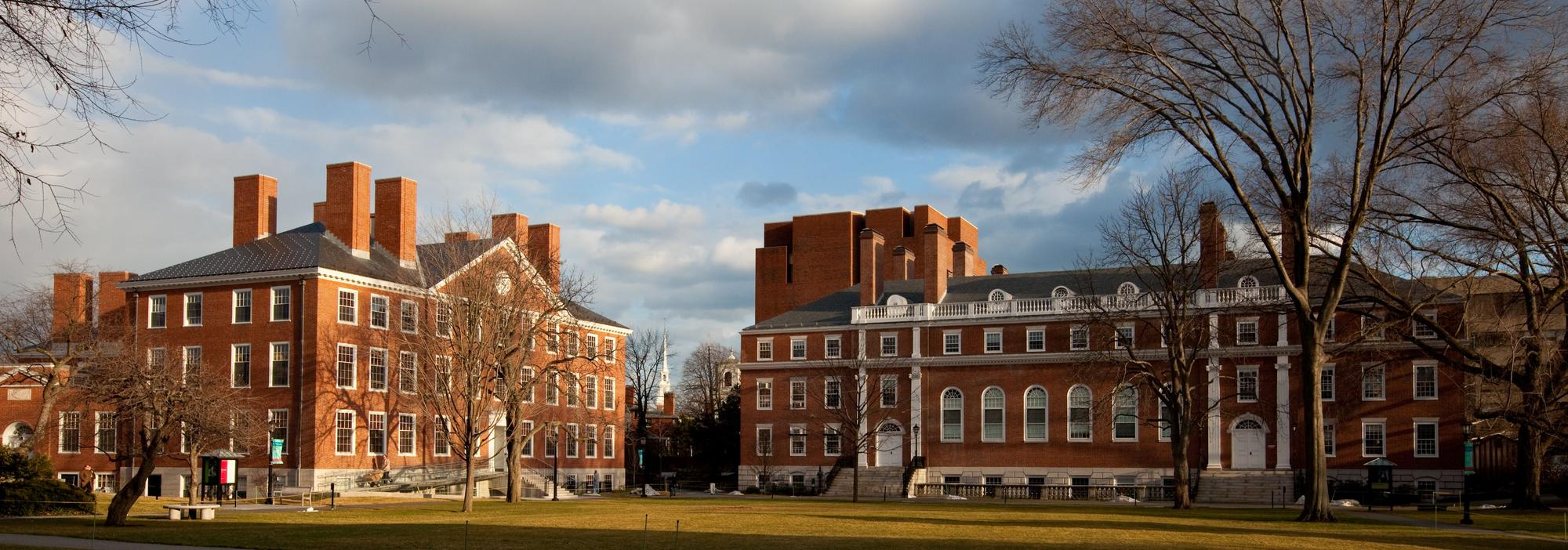 What does it take to get into Harvard University?