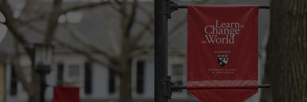 fellows banner