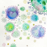 A watercolor image of the virus behind COVID-19