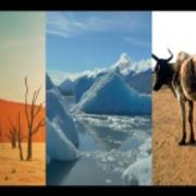 climate videos
