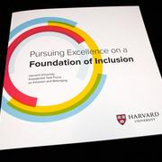 Inclusion and Belonging Brochure