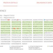 Screenshot of a results page from iProteinDB