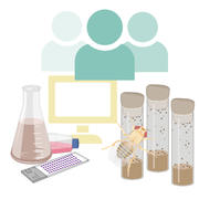 Graphical image of tissue culture, fly pushing, and computer, and the team of people who work with them