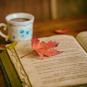 Fall leaf on open book