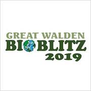 Great Walden BioBlitz logo
