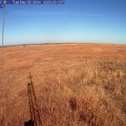 Richardson-Hufkens Grasslands Study