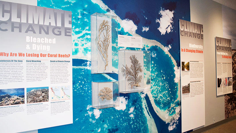 Climate Change exhibit in the Harvard Museum of Natural History