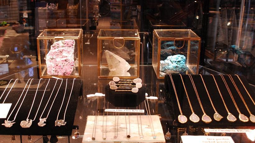 The Shop at HMNH   Harvard Museum of Natural History