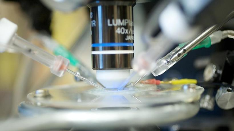 Laboratory Work being done with a microscope and pipettes