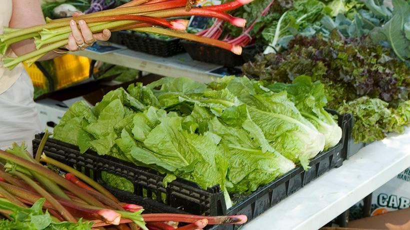 Vegetable greens announcing Farmers' Market