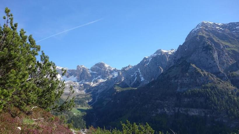 Dolomites, in Northeastern Italy, nearby roe deer study site