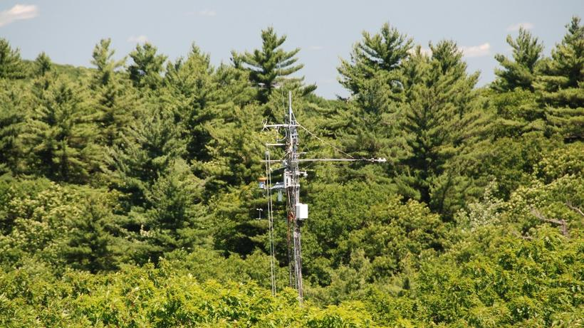 The Environmental Measurements (EMS) Tower at the Harvard Forest in Petersham, MA