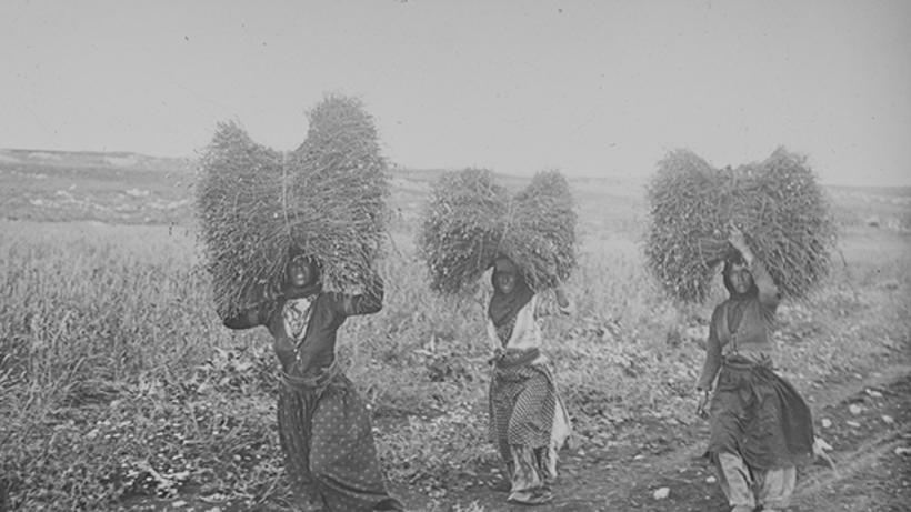 Three women carrying bales of grass on their shoulders.