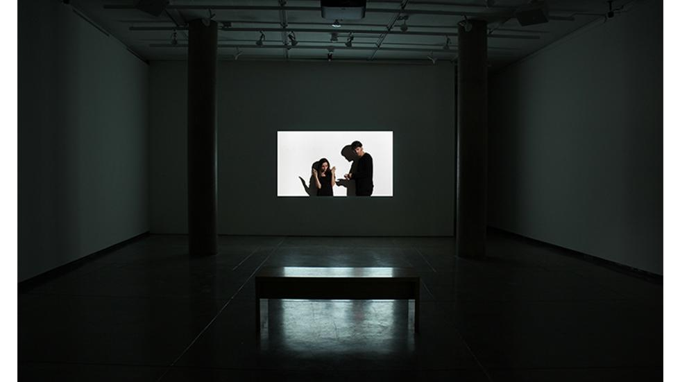 02/03 Installation view. Kerry Tribe, Critical Mass 2012 featuring Nick Huff and Emelie O'Hara