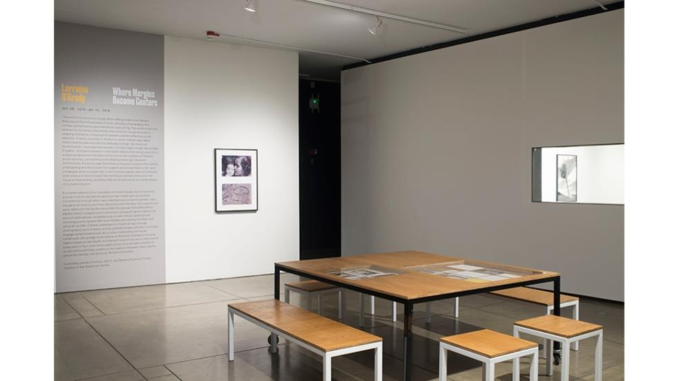 02/05 Installation view of Miscegenated Family Album (A Mother's Kiss), courtesy Alexander Gray Associates, New York