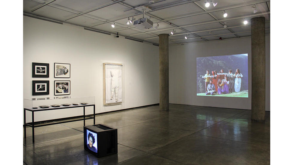 01/03 Installation view, Embodied Absence: Chilean Art of the 1970s Now, Carpenter Center for the Visual Arts, Sert Gallery