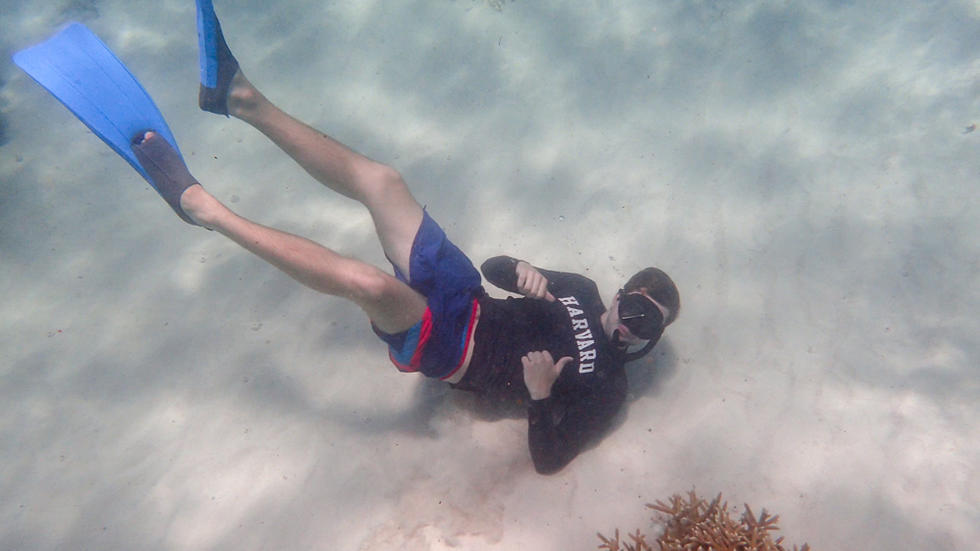 Student wearing snorkeling gear and a Harvard shirt, underwater, pointing at shirt