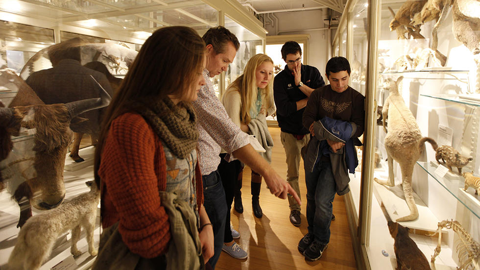 Group of college students being led by a professor in the galleries.