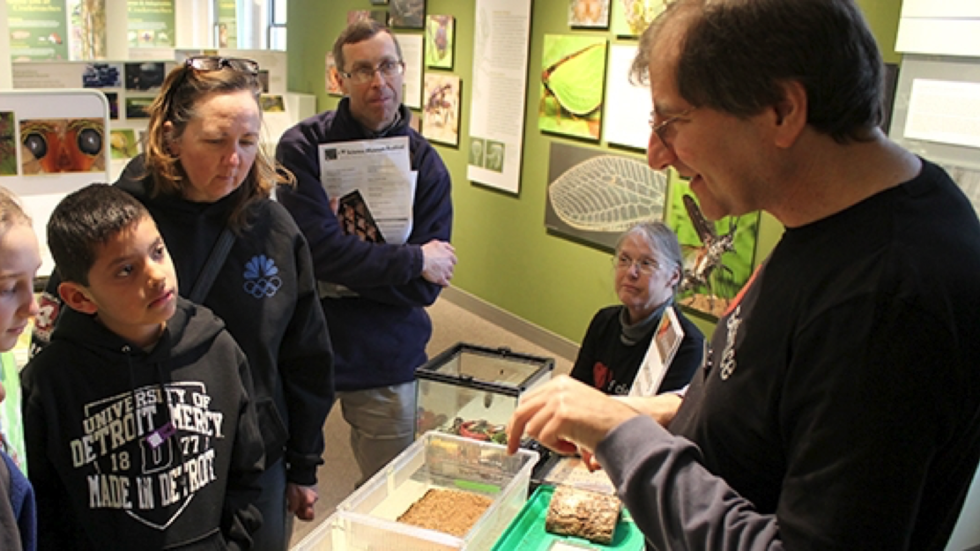 A volunteer shows specimens to visitors in our Arthropods Gallery.