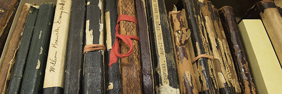 Field notes and manuscripts from the late 1800s and early 1900s, all located at the Ernst Mayr Library of the Museum of Comparative Zoology.