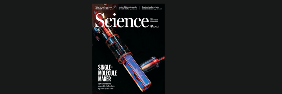 NaCs science cover