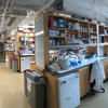A photo of the Dulac lab