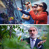 This image has two photos: on top is Kang-Kuen Ni in her lab with two students and on bottom is Daniel Nocera standing in a greenhouse
