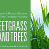 Tales of Sweetgrass and Trees