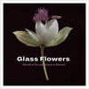 Glass Flowers: Marvels of Art and Science at Harvard book cover