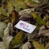 How Do You Get Environmentalists to Actually Vote?
