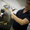 Andy Biewener Studies Bird Muscles In Motion