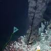 Peter Girguis' Latest Seafloor Exploration Reveals Vast Methane-Driven Oasis